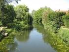 River Stour (Steve Derbyshire)